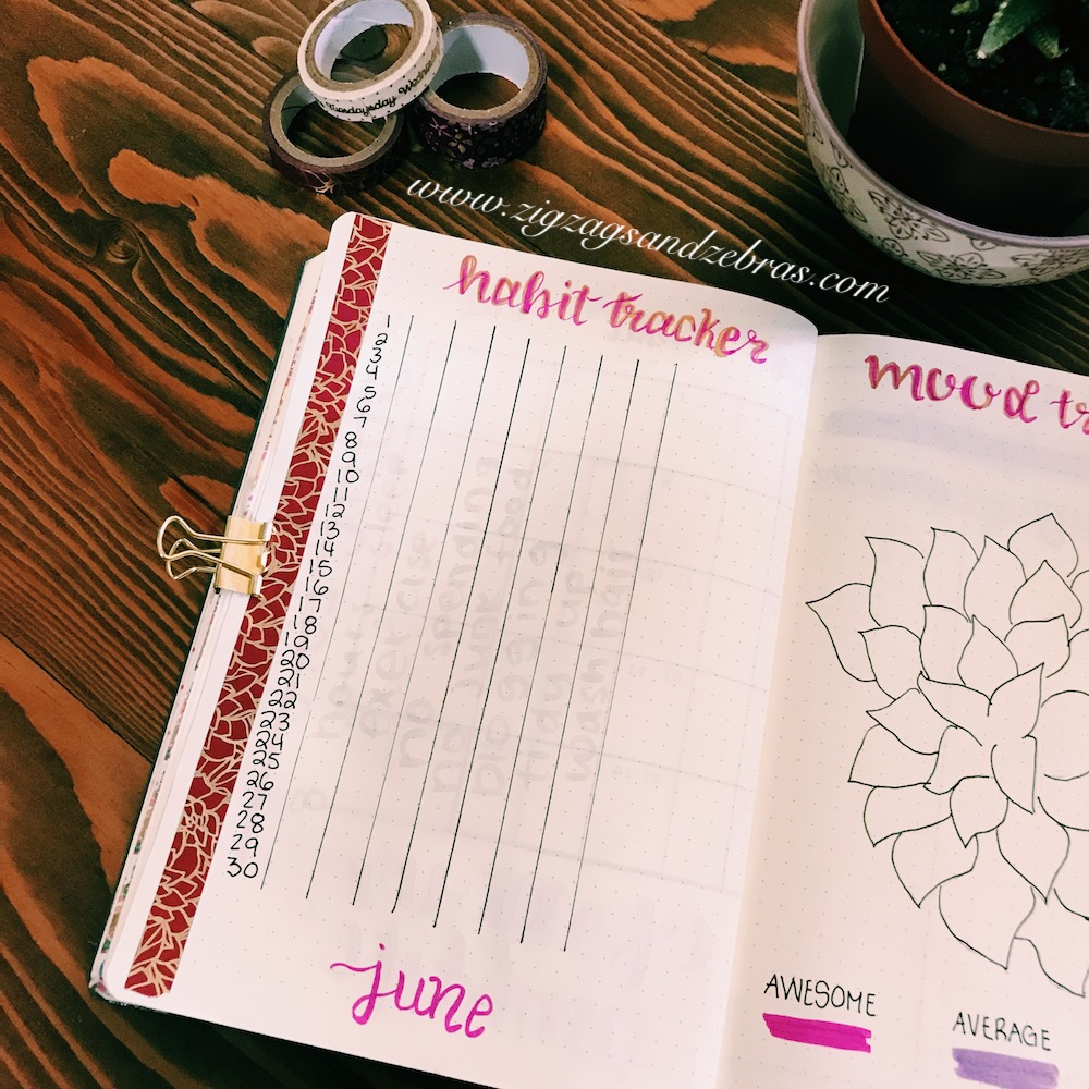 bullet journal monthly setup, habit tracker, bullet journal, collection, tracker, planner