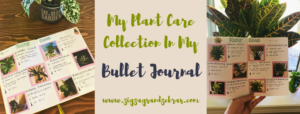Keeping Track Of House Plant Care In My Bullet Journal, Plant Care Bullet Journal, Gardening Spread, Houseplant Care Bullet Journal, Bujo Collection