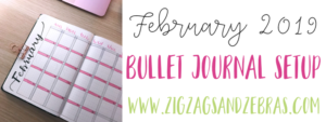 FEBRUARY BULLET JOURNAL SETUP. A look through my bullet journal monthly pages, budget pages, and collections for February. Bullet journal plan with me. #bulletjournal #planwithme #februarybulletjournal #plannerideas