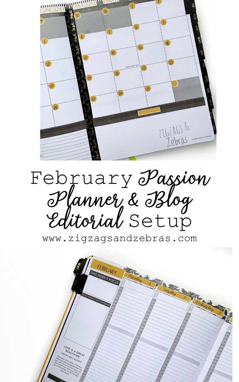 February Passion Planner Setup, Monthly Setup, Planner Setup, Editorial Calendar, Blog Planner